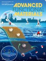 Electrocatalysts: Hydrophobic and Electronic Properties of the E‐MoS2 Nanosheets Induced by FAS for the CO2 Electroreduction to Syngas with a Wide Range of CO/H2 Ratios