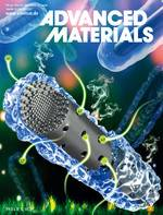 Electrode Materials: Interfacial Lattice‐Strain‐Driven Generation of Oxygen Vacancies in an Aerobic‐Annealed TiO2(B) Electrode