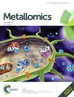 Antibacterial mechanism of silver nanoparticles in Pseudomonas aeruginosa: proteomics approach