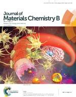 Overcoming blood–brain barrier by HER2-targeted nanosystem to suppress glioblastoma cell migration, invasion and tumor growth