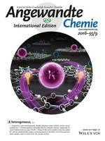 Graphene Oxide Catalyzed C−H Bond Activation: The Importance of Oxygen Functional Groups for Biaryl Construction (Angew. Chem. Int. Ed. 9/2016) (page 3234)